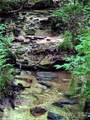 TBD Breckenridge Trail - Photo 4