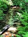 TBD Breckenridge Trail - Photo 5