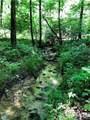 TBD Breckenridge Trail - Photo 7