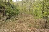 0 Shiners Ridge - Photo 9