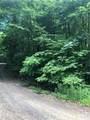 99999 High Top Mountain Road - Photo 8