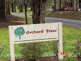 338 Orchard Trace Lane - Photo 3