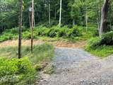 99 Wooded Mountain Trail - Photo 3