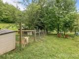 14 Honey Meadow Lane - Photo 31