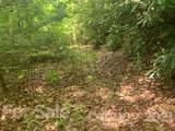 20 (MOL)Acres Off Vineyard Loop - Photo 16