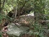 20 (MOL)Acres Off Vineyard Loop - Photo 18