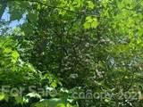 20 (MOL)Acres Off Vineyard Loop - Photo 20