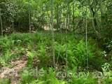 20 (MOL)Acres Off Vineyard Loop - Photo 21