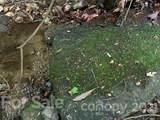 20 (MOL)Acres Off Vineyard Loop - Photo 4