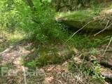 20 (MOL)Acres Off Vineyard Loop - Photo 31