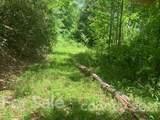 20 (MOL)Acres Off Vineyard Loop - Photo 35