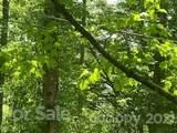 20 (MOL)Acres Off Vineyard Loop - Photo 36
