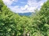 432 Appaloosa Trail - Photo 3