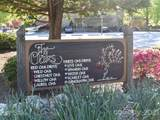 301 Red Oak Drive - Photo 35