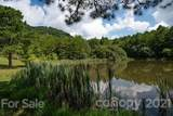 281 Bearwallow Trail - Photo 45