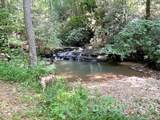 225 Bobcat Trail - Photo 23