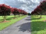 4358 Chantilly Drive - Photo 3