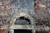 131 Innes Street - Photo 8