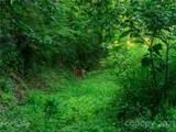 00 Grandiflora Path - Photo 13