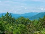 00 Grandiflora Path - Photo 8