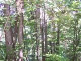 25 Running Deer Lane - Photo 9