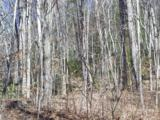 Lot 99 Whispering Woods Path - Photo 4