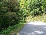1491 Winding Creek Drive - Photo 15