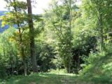 1491 Winding Creek Drive - Photo 6
