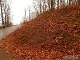 0 Paso Fino Drive - Photo 11