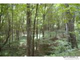 0 Roaring Fork Road - Photo 2