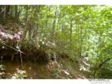 0 Roaring Fork Road - Photo 4
