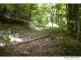 0 Roaring Fork Road - Photo 5