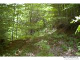 0 Roaring Fork Road - Photo 6