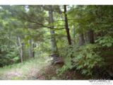0 Roaring Fork Road - Photo 8