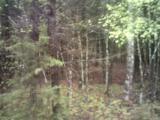 0 Big Cedar Drive - Photo 1
