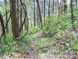 Lot 73 Running Deer Lane - Photo 2