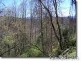 Lot 74 Running Deer Lane - Photo 12