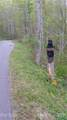 00 Schotts Pass Way - Photo 11