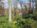 1252 Mills River Way - Photo 1