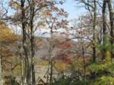 1252 Mills River Way - Photo 7