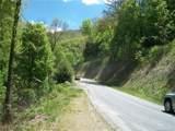 53 Wildcat Run Road - Photo 5