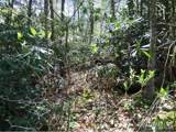 30 acre Otter Creek Road - Photo 15