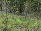30 acre Otter Creek Road - Photo 9