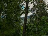 LOT 25 Hawks Nest Trail - Photo 1