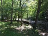 TBD (2.58 acres) Wild Iris Lane - Photo 13
