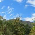 10 Gusty Knoll Trail - Photo 1