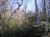 M12R Pine Mountain Trail - Photo 4