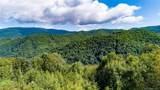 0000 Bearwallow Ridge Trail - Photo 11