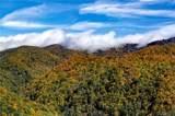 0000 Bearwallow Ridge Trail - Photo 12