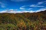 0000 Bearwallow Ridge Trail - Photo 15